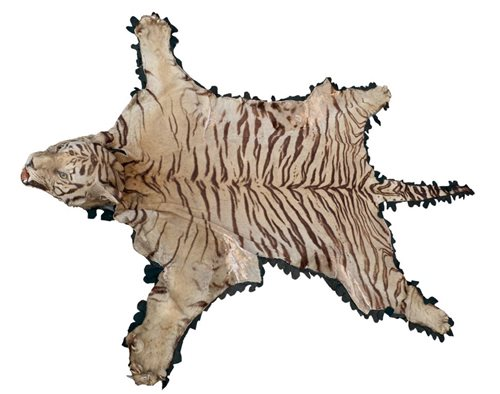 Lot 787-An early 20th century Tiger skin rug with head...