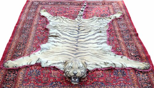 Lot 933-A good 1920s Van Ingen of Mysore Tiger skin rug...