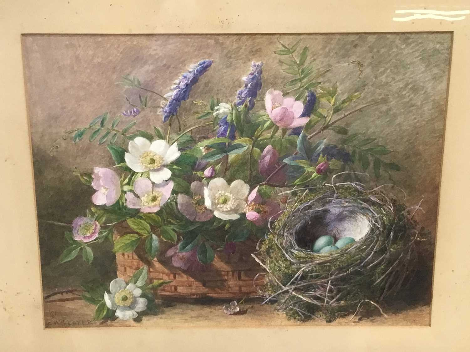 Lot 20-Slater, late Victorian watercolour - still life of flowers and birds eggs in a nest, signed, in glazed frame