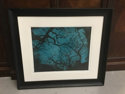 Lot 20-Jenny Gunning Contemporary Artists Proof 'Trees at Night' signed and dated 2016, mounted in glazed frame, purchased from Ironbridge Fine Art for £320.00