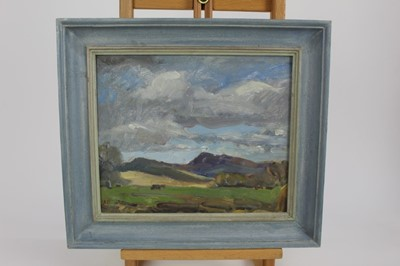 Lot 14-Frame oil painting of Northumberland, signed AP