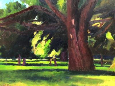 Lot 70 - David Britton, contemporary, oil on board - Cyprus Tree, signed, framed, 40cm x 66cm
