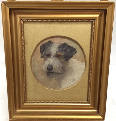 Lot 65 - English School watercolour study- the head of a terrier, monogrammed and dated 1903, within circular mount in gilt frame, diameter 18cm