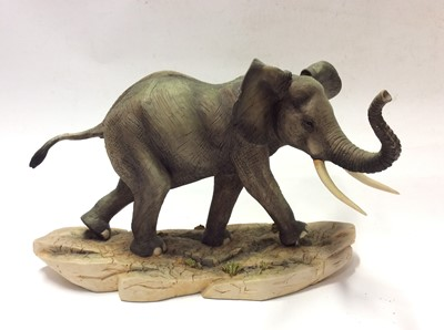 Lot 3 - Border Fine Arts limited edition model African Elephant, No. 474 of 750 by R T Roberts
