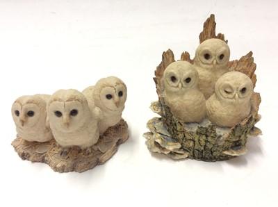 Lot 7 - Nine Border Fine Arts models of owls, some by Ayres