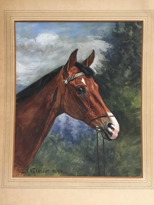 Lot 115 - Karl Volkers (1868-1944), Gouache of horse, signed and dated 1893