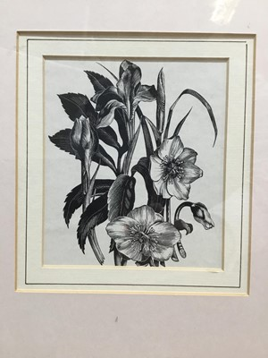 Lot 59 - Three Clare Leighton framed wood engravings from Four Hedges