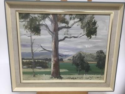Lot 163 - John Attwood (20th century) oil on board, eucalyptus trees