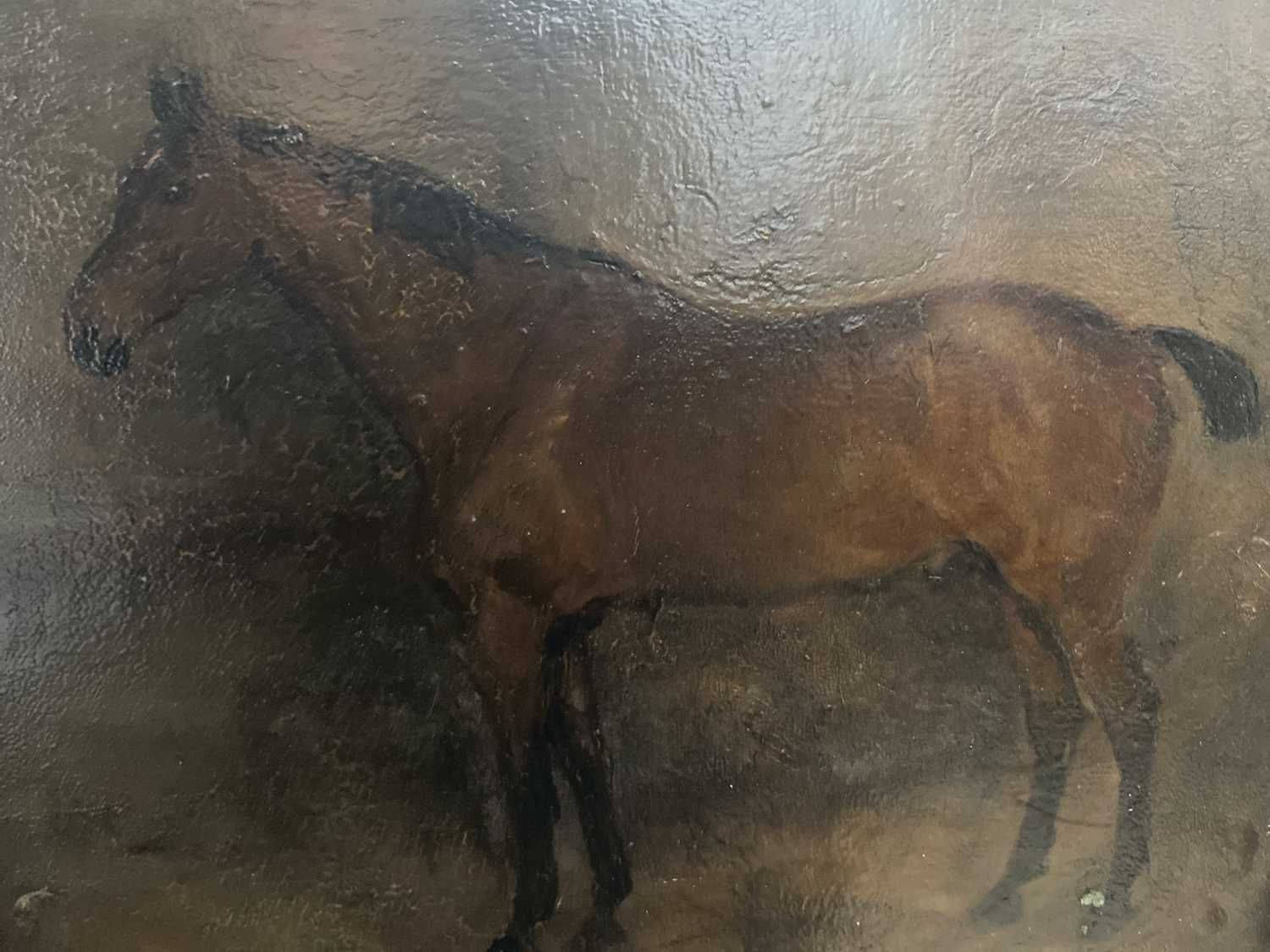 Lot 67 - English School 19th Century, oil on board, A chestnut hunter in a stable, in gilt frame. 19 x 24cm