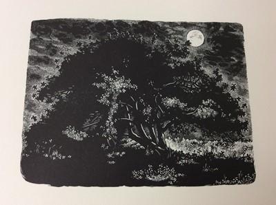 Lot 43 - Miriam Macgregor - Diary of an Apple Tree