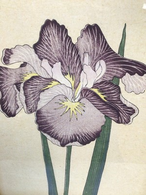 Lot 28 - Set of six 19th century Japanese woodblocks depicting Irises, five inscribed in pencil, 37cm x 25.5cm, in decorative gilt and painted frames