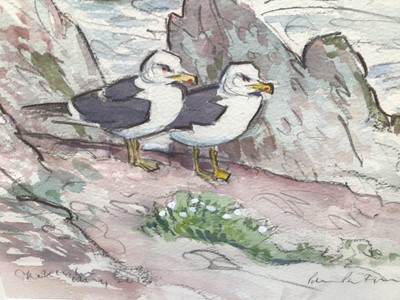 Lot 21 - Peter Partington (b. 1941) pencil and watercolour - two gulls on the coast, signed, 20cm x 28cm, in glazed frame