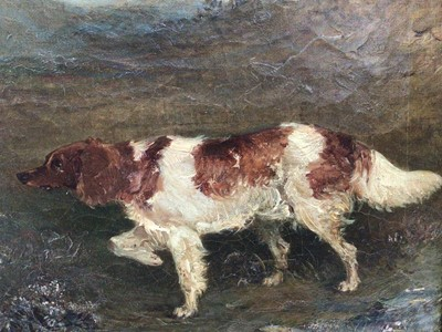 Lot 90 - English School 19th Century, oil on canvas, A setter in a landscape, monogrammed J.C. and dated 1869, in gilt frame. 21 x 28cm.