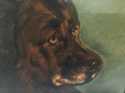 Lot 91 - Attributed to George Earl (1824 - 1908), oil on board, A study of the head of a large dog, in gilt and painted frame. 24 x 29cm.