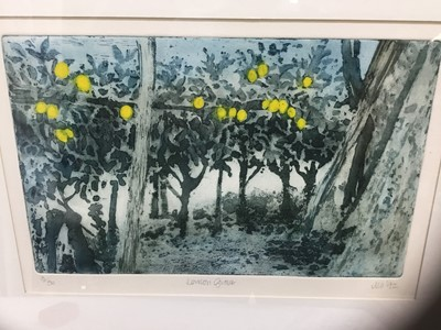 Lot 78 - MO (Contemporary) colour aquatint, lemon grove, signed dated '92, numbered 3/50, 19 x 30cm, glazed frame, together with a small watercolour indistinctly signed and numbered 10-10-9. (2)