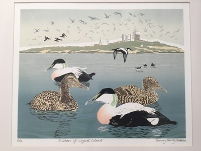 Lot 117 - Penny Berry Paterson (1941-2021) colour linocut, Eiders off Coguet Island, signed, titled and numbered 4/20, image 32 x 42cm, framed