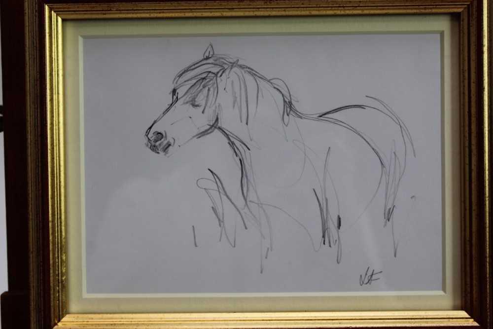 Lot 1809 - Lesley Fotherby (b.1946) pencil drawing - Pony Hovering Hopefully, initialled, in glazed gilt frame, 14cm x 19.5cm  Provenance: Chris Beetles Ltd. London
