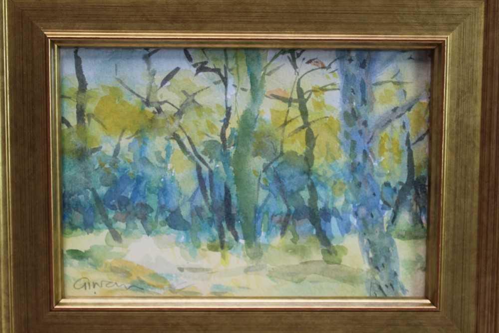 Lot 1743 - *Geraldine Girvan (b.1947) watercolour - Winter Light and Birches, signed, in glazed gilt frame, 13.5cm x 19.5cm  Provenance: Chris Beetles Ltd. London