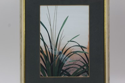 Lot 1791 - Richard Constable (b.1932) two watercolours - Dragonflies, signed and dated  1969 and 1970, in glazed frames