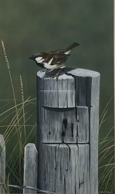 Lot 71 - Len Dally acrylic on paper - sparrow on a post