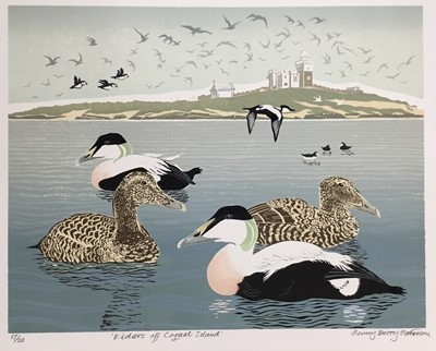 Lot 169 - Penny Berry Paterson (1941-2021) colour linocut print, Eiders off Coquat Island, signed and numbered 17/20, 32 x 41cm
