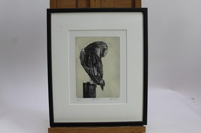 Lot 1880 - Peter Beeson, contemporary, three signed limited edition etchings - Owls, Barn, Short eared and Hawk each signed and numbered, one framed, two mounted